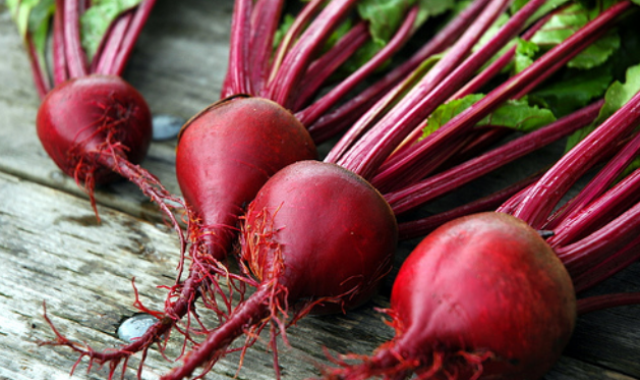 beetroot-uprooted-640x380
