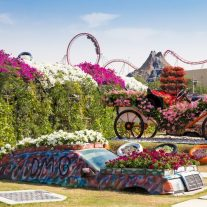 9060716-dubai-uae-january-20-miracle-garden-in-dubai-on-january-20-2014-dubai-uae-beautiful-miracle-garden-with-45-million-flowers